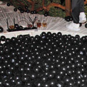 piscina de bolas negras